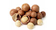 Roasted & Salted Macadamia Nuts with Shell